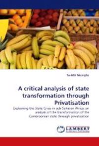 A Critical Analysis of State Transformation Through Privatisation