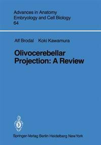 Olivocerebellar Projection
