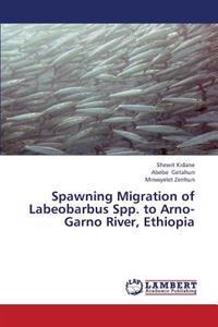 Spawning Migration of Labeobarbus Spp. to Arno-Garno River, Ethiopia