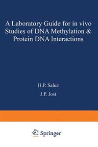 A laboratory guide for in vivo studies of DNA methylation and protein/DNA interactions
