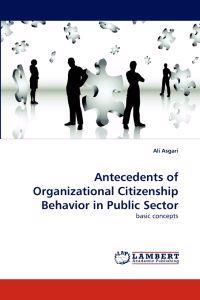 Antecedents of Organizational Citizenship Behavior in Public Sector