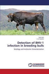 Detection of Bhv-1 Infection in Breeding Bulls