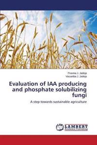 Evaluation of Iaa Producing and Phosphate Solubilizing Fungi