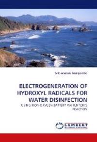 Electrogeneration of Hydroxyl Radicals for Water Disinfection