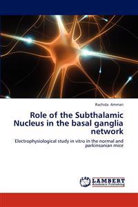 Role of the Subthalamic Nucleus in the Basal Ganglia Network