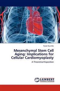 Mesenchymal Stem Cell Aging