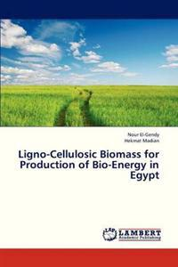 Ligno-Cellulosic Biomass for Production of Bio-Energy in Egypt