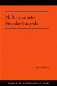 Multi-Parameter Singular Integrals