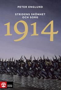 1914 : stridens skönhet och sorg : första världskrigets inledande år i 68 korta kapitel