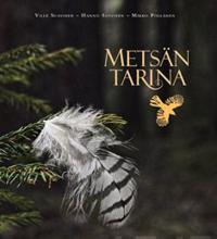 Metsän tarina
