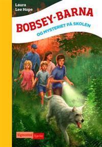 Bobsey-barna og mysteriet på skolen