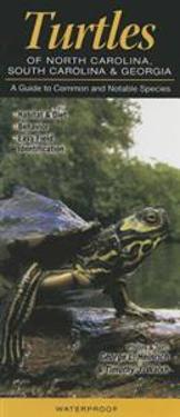 Turtles of North Carolina, South Carolina & Georgia: A Guide to Common & Notable Species