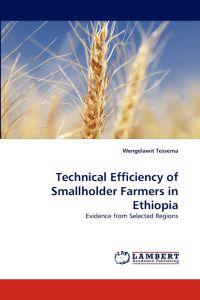 Technical Efficiency of Smallholder Farmers in Ethiopia
