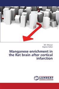 Manganese Enrichment in the Rat Brain After Cortical Infarction