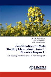 Identification of Male Sterility Maintainer Lines in Brassica Napus L.
