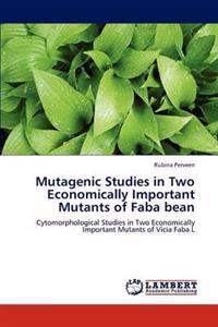 Mutagenic Studies in Two Economically Important Mutants of Faba Bean