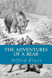 The Adventures of a Bear
