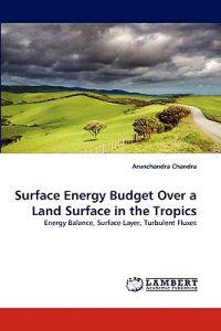Surface Energy Budget Over a Land Surface in the Tropics