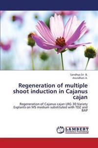 Regeneration of Multiple Shoot Induction in Cajanus Cajan