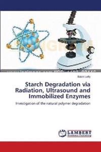 Starch Degradation Via Radiation, Ultrasound and Immobilized Enzymes