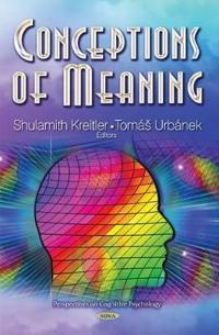 Conceptions of Meaning