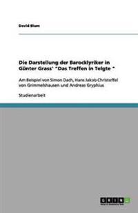 """Die Darstellung Der Barocklyriker in Gunter Grass' """"Das Treffen in Telgte """""""