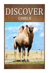 Camels - Discover: Early Reader's Wildlife Photography Book