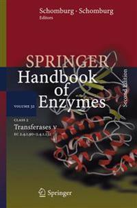 Class 2 Transferases V