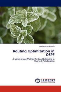 Routing Optimization in Ospf