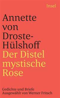 Der Distel mystische Rose
