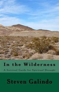 In the Wilderness: A Survival Guide for Spiritual Drought