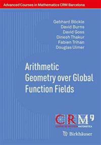Arithmetic Geometry over Global Function Fields