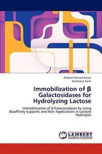 Immobilization of ß Galactosidases for Hydrolyzing Lactose