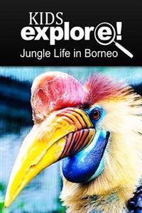 Jungle Life in Borneo - Kids Explore: Animal Books Nonfiction - Books Ages 5-6