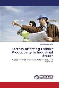 Factors Affecting Labour Productivity in Industrial Sector
