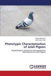 Phenotypic Characterization of Jalali Pigeon