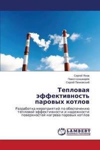 Teplovaya Effektivnost' Parovykh Kotlov