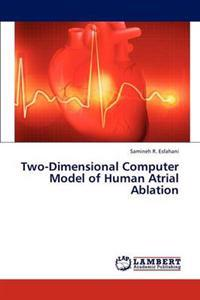 Two-Dimensional Computer Model of Human Atrial Ablation