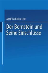 Der Bernstein Und Seine Einschlüsse