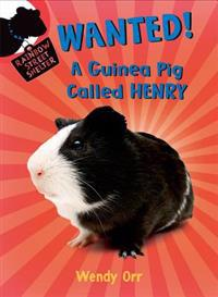 Wanted!: A Guinea Pig Called Henry