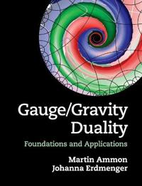 Gauge / Gravity Duality
