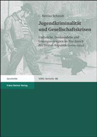Jugendkriminalitat Und Gesellschaftskrisen: Umbrueche, Denkmodelle Und Losungsstrategien Im Frankreich Der Dritten Republik (1900-1914)