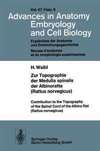Zur Topographie der Medulla Spinalis der Albinoratte (Rattus Norvegicus) / Contributions to the Topography of the Spinal Cord of the Albino Rat (Rattus Norvegicus)