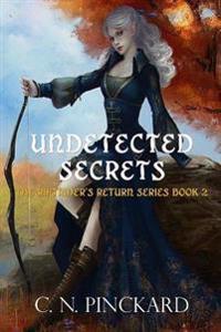Undetected Secrets: Riftrider's Return Book 2
