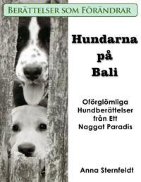 Hundarna på Bali - Oförglömliga Hundberättelser från Ett Naggat Paradis