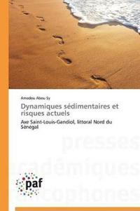 Dynamiques S dimentaires Et Risques Actuels