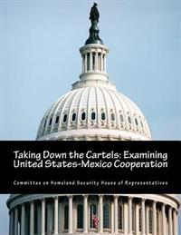 Taking Down the Cartels: Examining United States-Mexico Cooperation