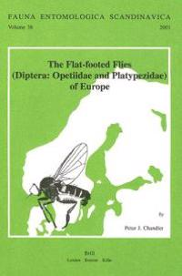 The Flat-Footed Flies