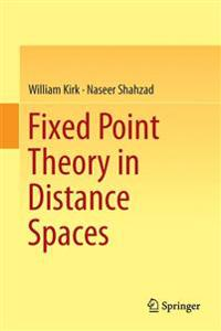 Fixed Point Theory in Distance Spaces
