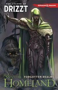 Dungeons & Dragons: The Legend of Drizzt Volume 1 - Homeland